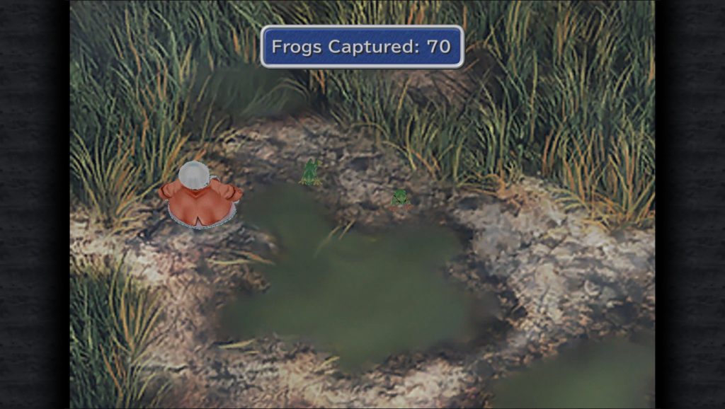 Final Fantasy IX Frog Catching